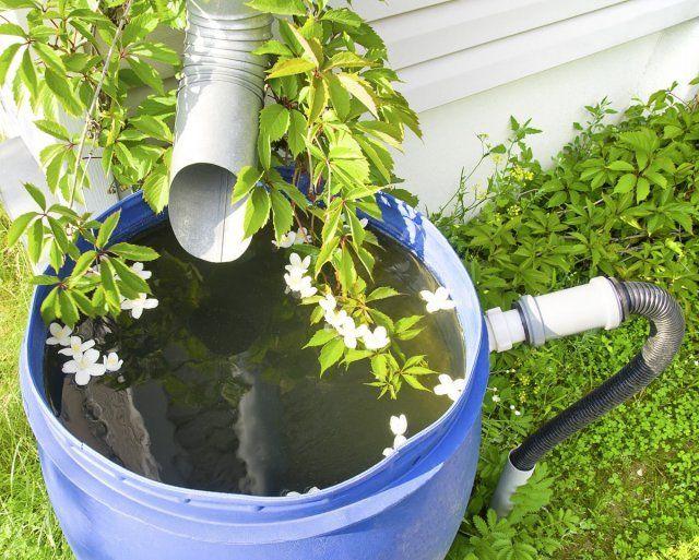сбор дождевой воды в емкость